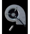 Moteur P297 + Condensateur